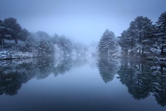 Fantasía de invierno #1