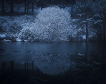 Fantasía de invierno #3
