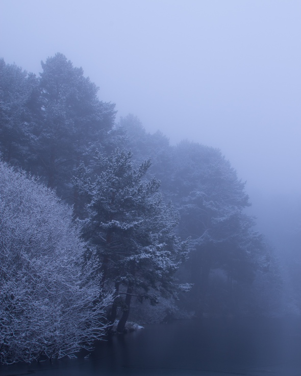 Fantasía de invierno #4