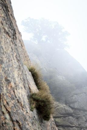 Vía Ezequiel, Pico de la Miel, 2015 (5)