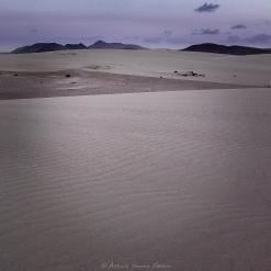 Dunas de Corralejo 2016 #1